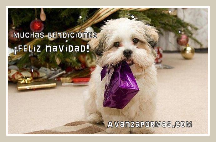 postales-cristianas-de-navidad-24