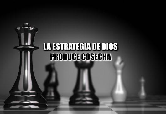 Las Estrategias de Dios Producen Grandes Cosechas