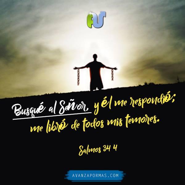 Versiculos De La Biblia De Animo: Nuevas Imagenes Con Frases Cristianas De Ánimo Y