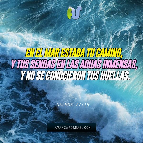 En el mar estaba tu camino avanza por m s for Frases de calma interior