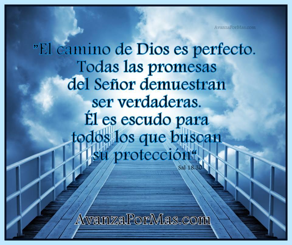 """IMAGEN) """"El camino de Dios es perfecto. Todas las promesas del ..."""