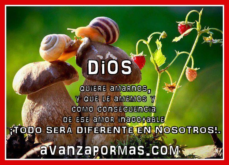 avanzapormas.comPOSTAL con Frase) DIOS quiere amarnos,y que le amemos