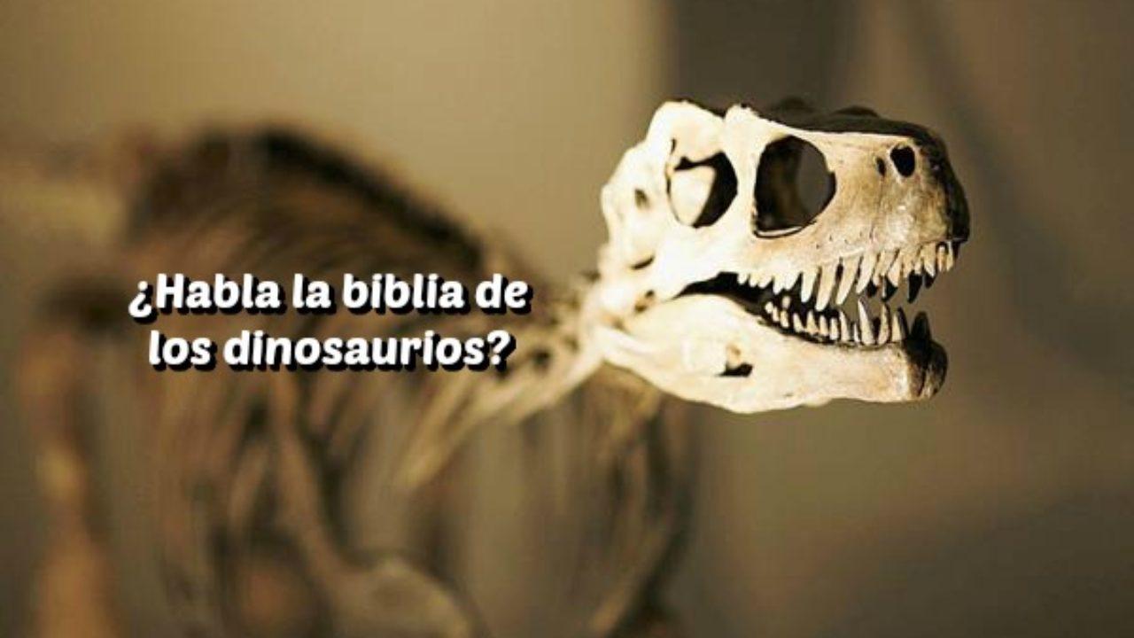 Que Dice La Biblia Acerca De Los Dinosaurios Avanza Por Mas Unusualcards.com marca de agua solo se incluye en las imágenes de pantalla para evitar los listados de imitadores y no se incluye en la impresión final. que dice la biblia acerca de los