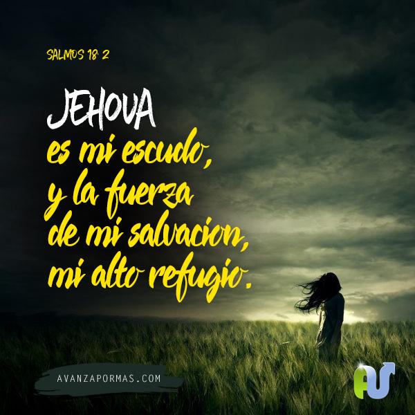 Versiculos De La Biblia De Animo: Jehova Es Mi Escudo, Y La Fuerza De Mi Salvación, Mi Alto